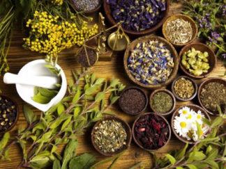 Erboristeria e Botanica